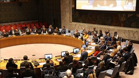 越南同部分机构和组织联合召开关于武装冲突中保护平民讨论会
