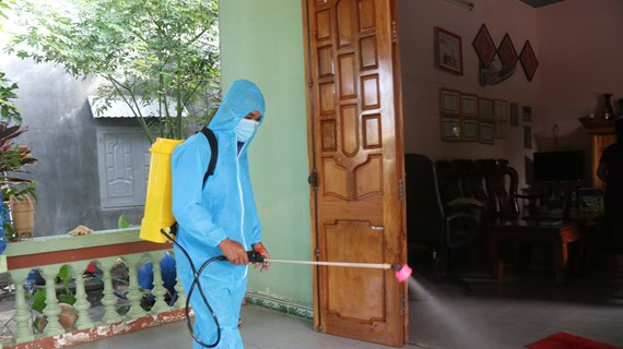 越南政府总理要求加强白喉病防控工作