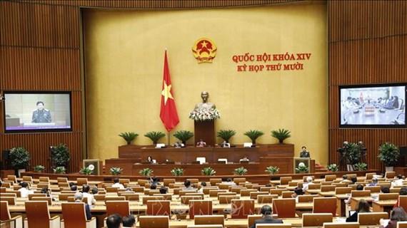 第十四国会第十次会议:参加联合国维和力量有助于提高越南的地位和威望