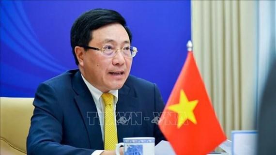 东盟外长非正式会议:越南与各国携手击退疫情