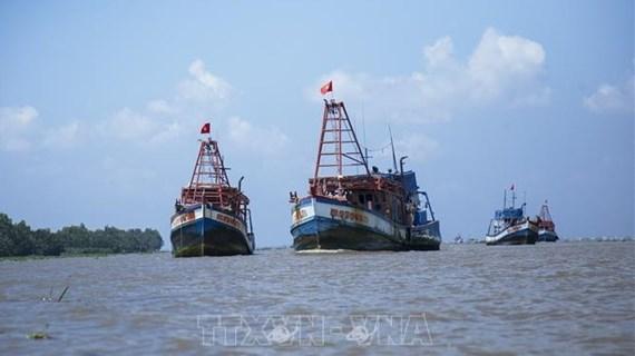 越南严厉打击在外国海域的非法捕鱼活动