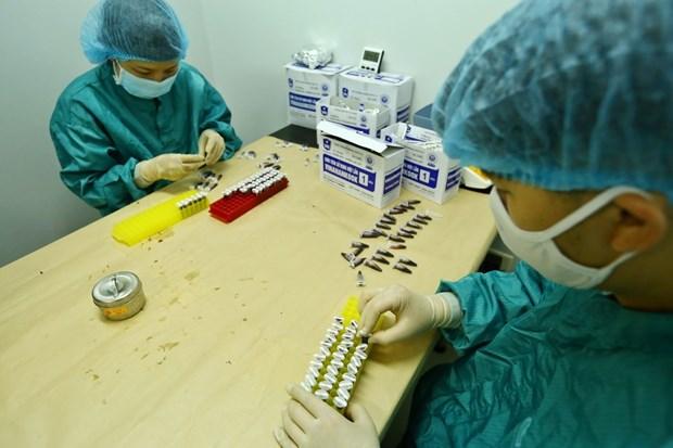 """新冠疫苗—助力人类长期且有效防控疫情的""""武器"""":越南的新冠疫苗研发神速(一) hinh anh 3"""