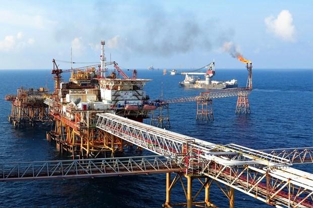 越南油气集团的利润高居全国第一 hinh anh 1