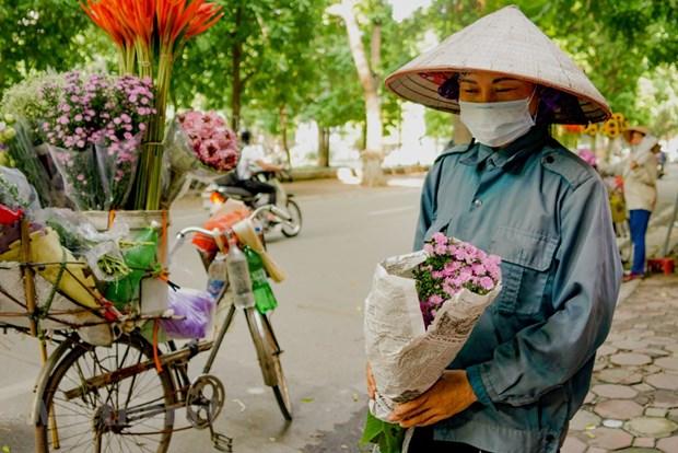 组图:花卉小货郎为河内秋天增添了一道亮丽的风景 hinh anh 10