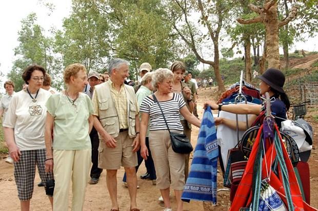 2015年前7个月越南接待国际游客量达近440万人次 hinh anh 1