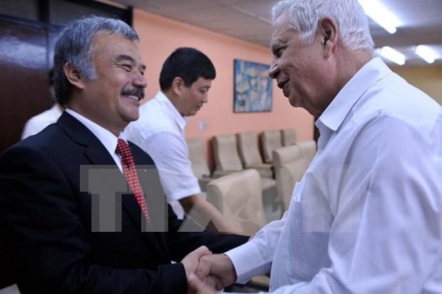 越南通讯社与古巴拉丁美洲通讯社加强合作 hinh anh 1