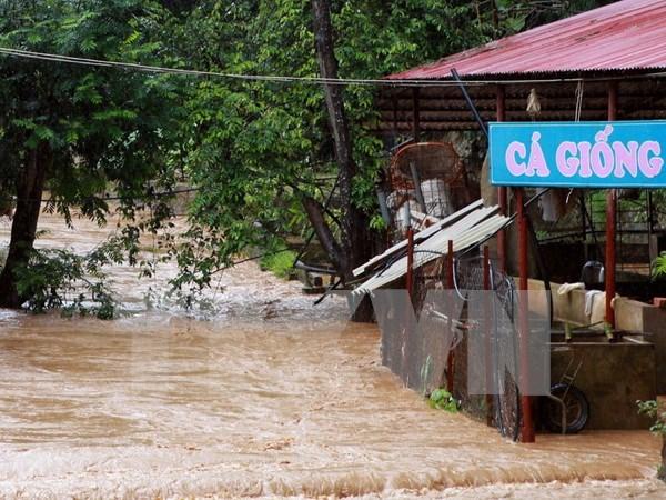 越南北部各省连日暴雨造成12人死亡和受伤 hinh anh 1