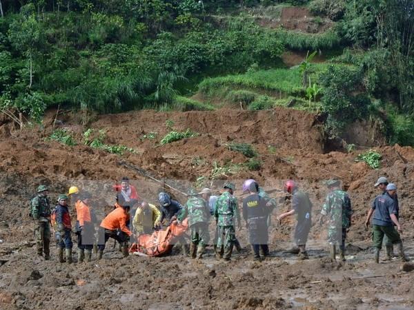 亚洲多国暴雨洪水形势复杂多变 hinh anh 1