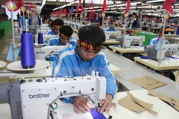 越南纺织服装出口企业进军俄罗斯市场的黄金机会 hinh anh 1