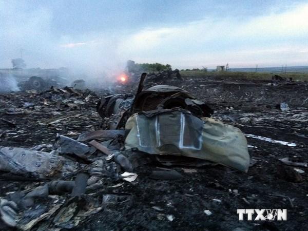 MH17失事现场发现疑似导弹碎片 hinh anh 1