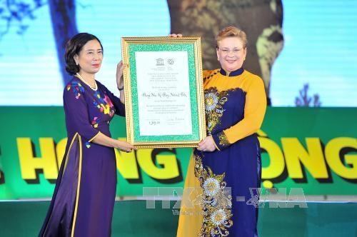 越南广平省丰芽—格邦国家公园重获世界自然遗产名录 hinh anh 1