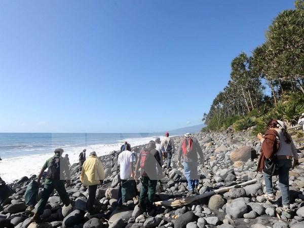 马来西亚:马尔代夫疑似碎片与MH370无关 hinh anh 1