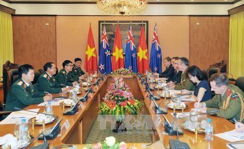 越南与新西兰推动防务领域合作 hinh anh 1