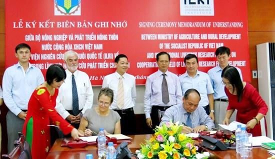 越南与国际畜牧研究所合作打造产业链加快畜牧业发展 hinh anh 1