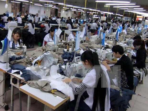 2015年前6个月柬埔寨纺织品服装出口同比增长9% hinh anh 1
