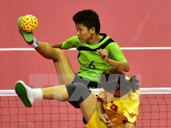 2015年越南全国青年藤球锦标赛落下战幕 hinh anh 1