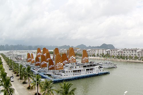 广宁省巡州国际邮轮港正式开港 hinh anh 2