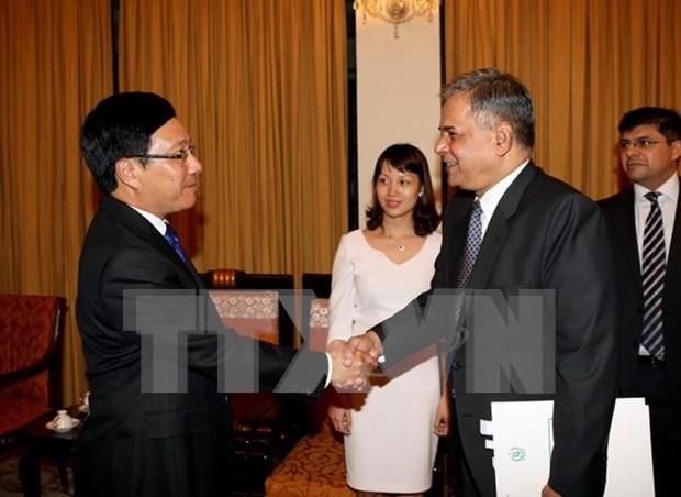 越南政府副总理兼外长会见巴基斯坦外交部副部长 hinh anh 1