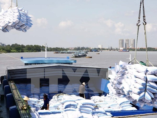 2015年前8个月越南农林水产出口额达193.1亿美元 hinh anh 1