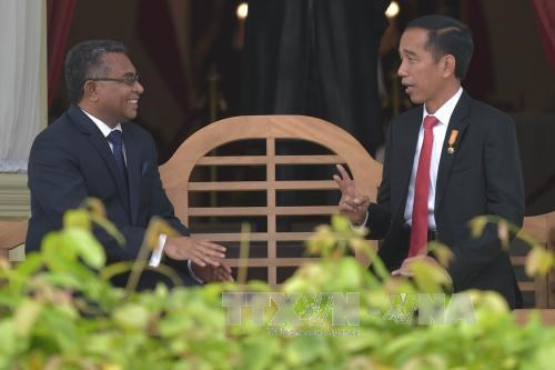 印尼加大对东帝汶基础设施建设投资力度 hinh anh 1