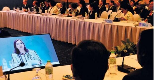 亚太经合组织反恐工作小组第六次会议在菲律宾举行 hinh anh 1