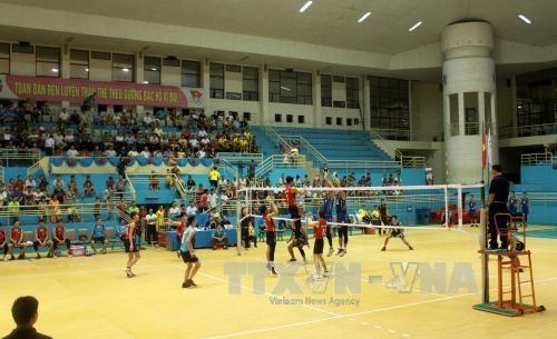2015年亚洲女排俱乐部锦标赛落户河南省 hinh anh 1