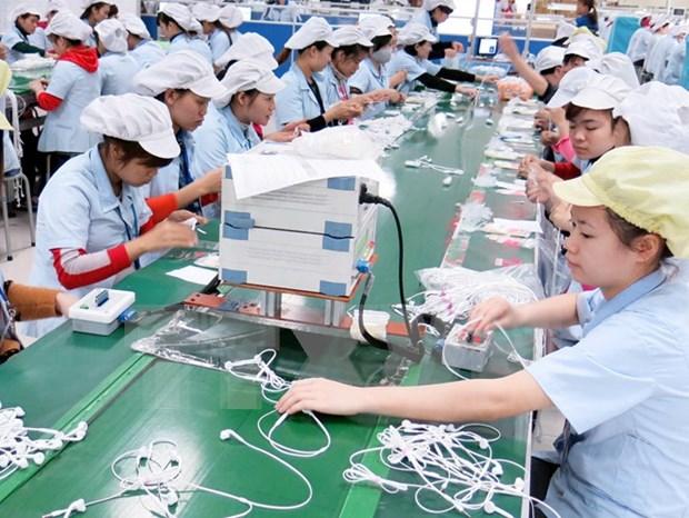 2015年前8个月越南经济出现积极转变 hinh anh 1