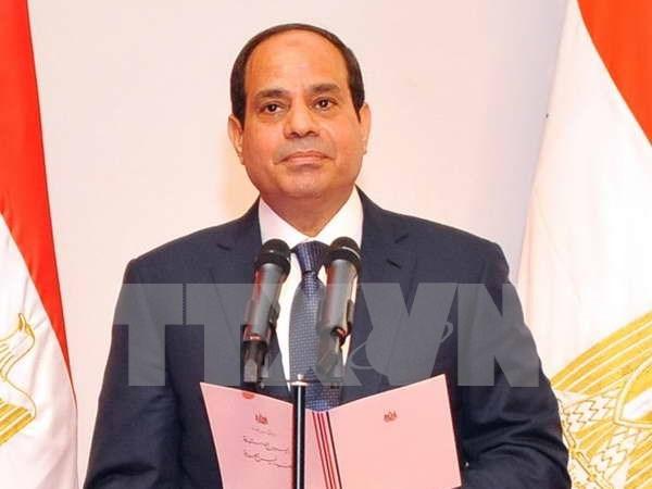 埃及致力加强同东盟各领域合作 hinh anh 1