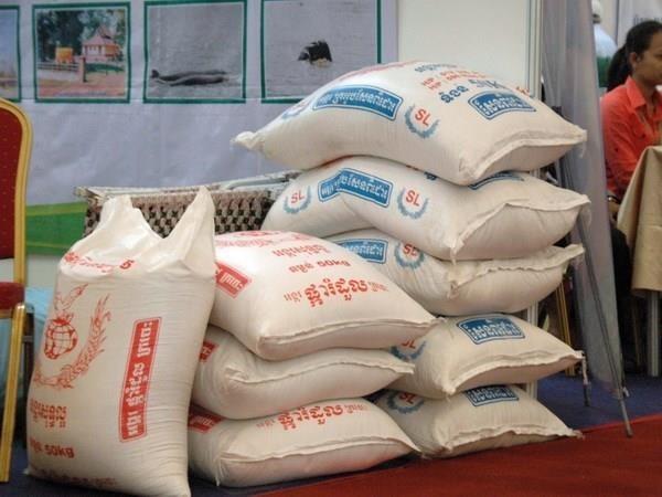 今年前8个月柬埔寨大米出口量同比增长46% hinh anh 1
