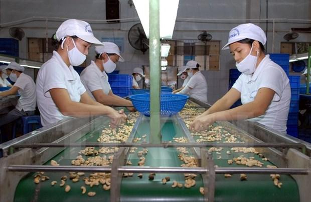 越南农产品对韩国出口潜力巨大 hinh anh 1