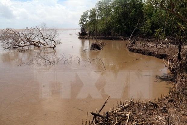 有关应对红河平原自然灾害和气候变化研讨会在宁平省举行 hinh anh 1