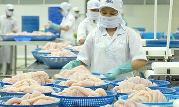 美国拟将提高越南查鱼的反倾销关税 hinh anh 1