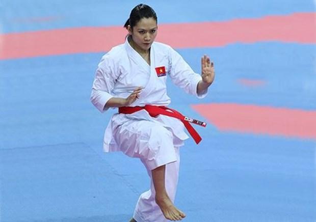 越南在2015年亚洲空手道锦标赛中夺得1金1铜 hinh anh 1
