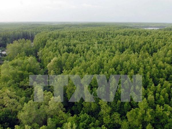 德国协助越南保护森林生态系统 hinh anh 1