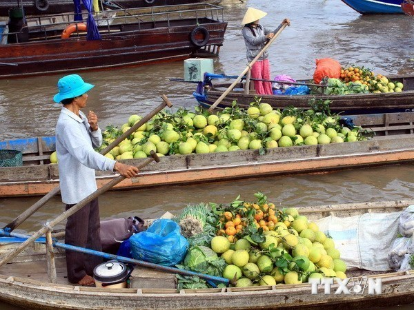 柬老越发展三角区国际旅游展览会在越南平顺省举行 hinh anh 1