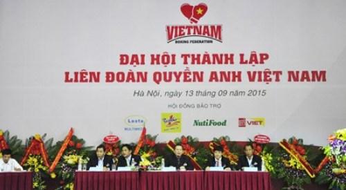 越南拳击联合会正式成立 hinh anh 1