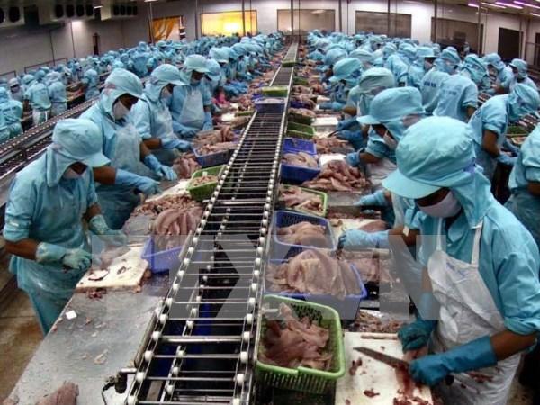 VASEP建议下调越南水产出口企业的贷款利率 hinh anh 1
