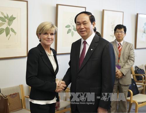 越南与澳大利亚执法机构提高合作效益 hinh anh 1