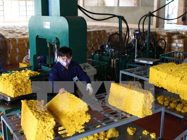 越南与国际三方橡胶理事会加强合作 hinh anh 1
