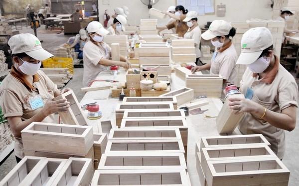越南对中国的木材贸易顺差额达4.25亿美元 hinh anh 1
