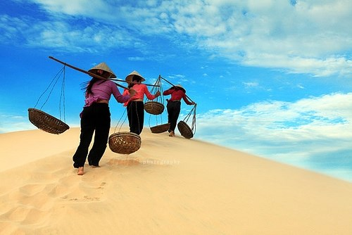 最受外国游客青睐的越南景点 hinh anh 3