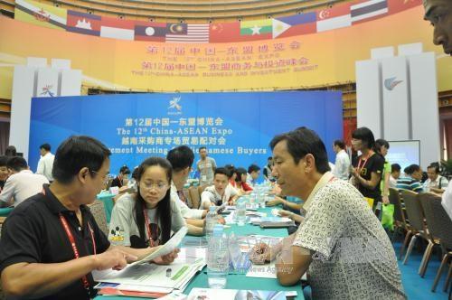 越南采购商专场贸易配对会在南宁举行 hinh anh 2