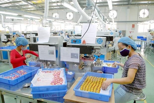 胡志明市各工业区和加工区有效运营 hinh anh 1