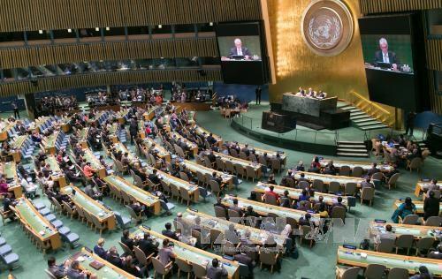 张晋创主席出席联合国发展峰会致力于展开越南和平合作与可持续发展的外交政策 hinh anh 1