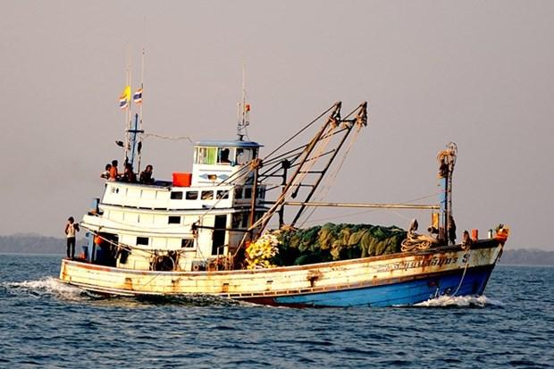 越南海警在金瓯海域扣押非法捕鱼的三艘泰国渔船 hinh anh 1