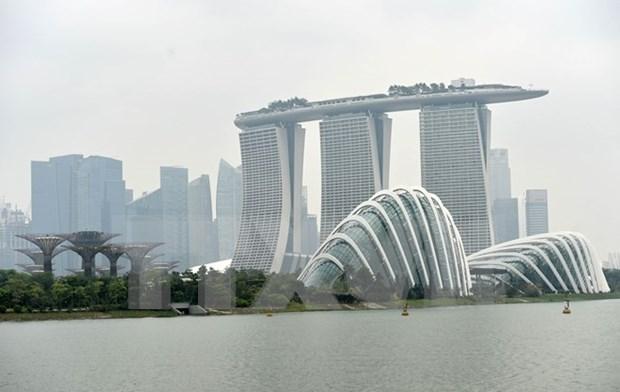 烟霾笼罩新加坡 该国欲向印尼企业开巨额罚单 hinh anh 1