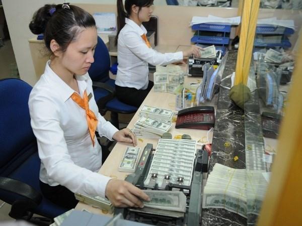越南国家银行下调美元存款利率 hinh anh 1