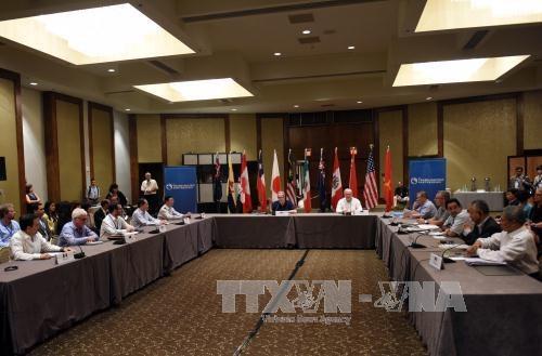 新一轮TPP部长级会议在美国亚特兰大举行 hinh anh 1