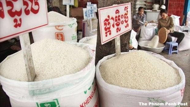 前9个月柬埔寨大米出口量同比增长37% hinh anh 1