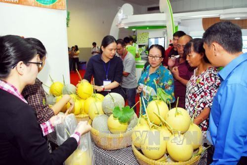 近100家企业参加2015年越南国际农业与农产品展销会 hinh anh 2
